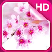 Sakura Live Wallpaper Hd For Android Apk Download