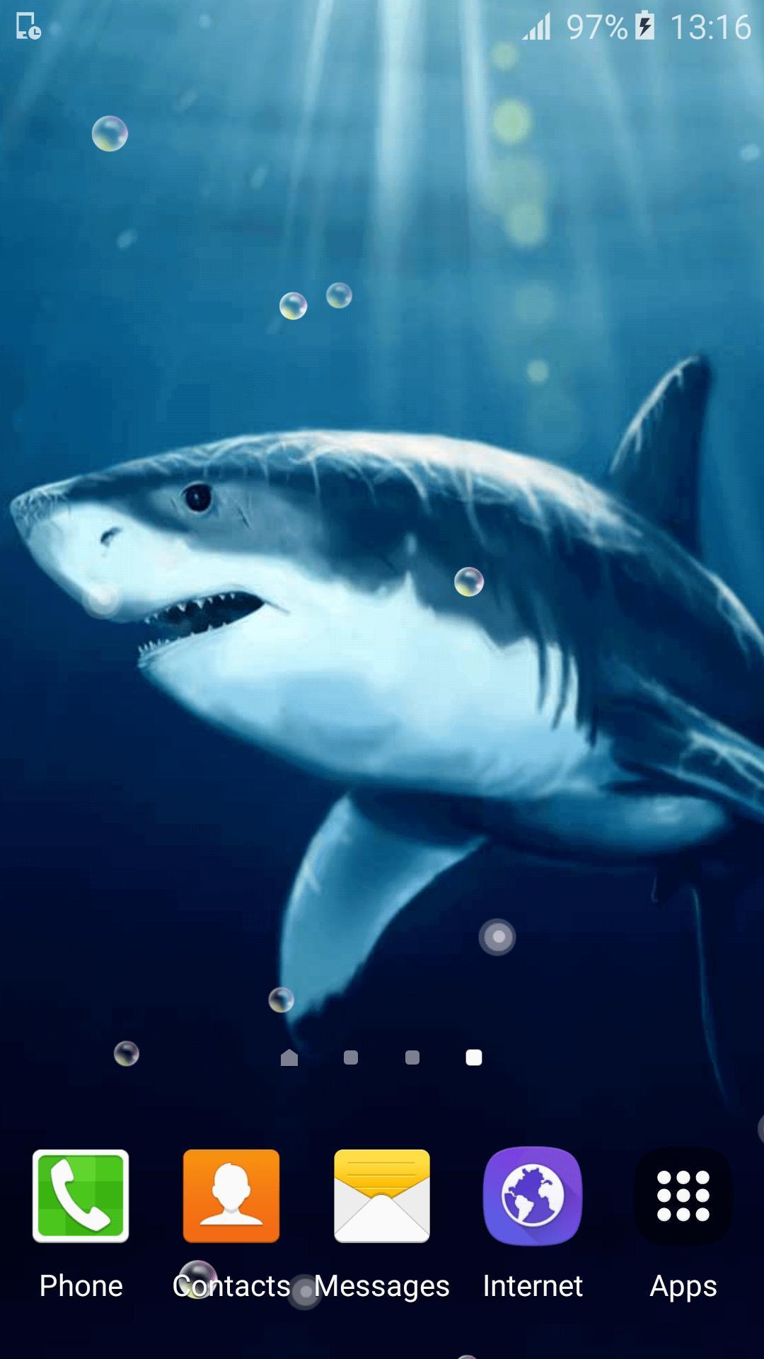4300 Koleksi Gambar Ikan Hiu Animasi Gratis