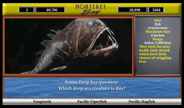 Monterey Bay Sea Life screenshot 9