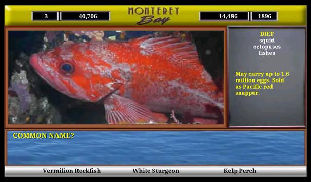 Monterey Bay Sea Life screenshot 11