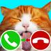 fake call cat 2 game APK