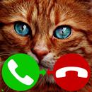 fake call cat game APK