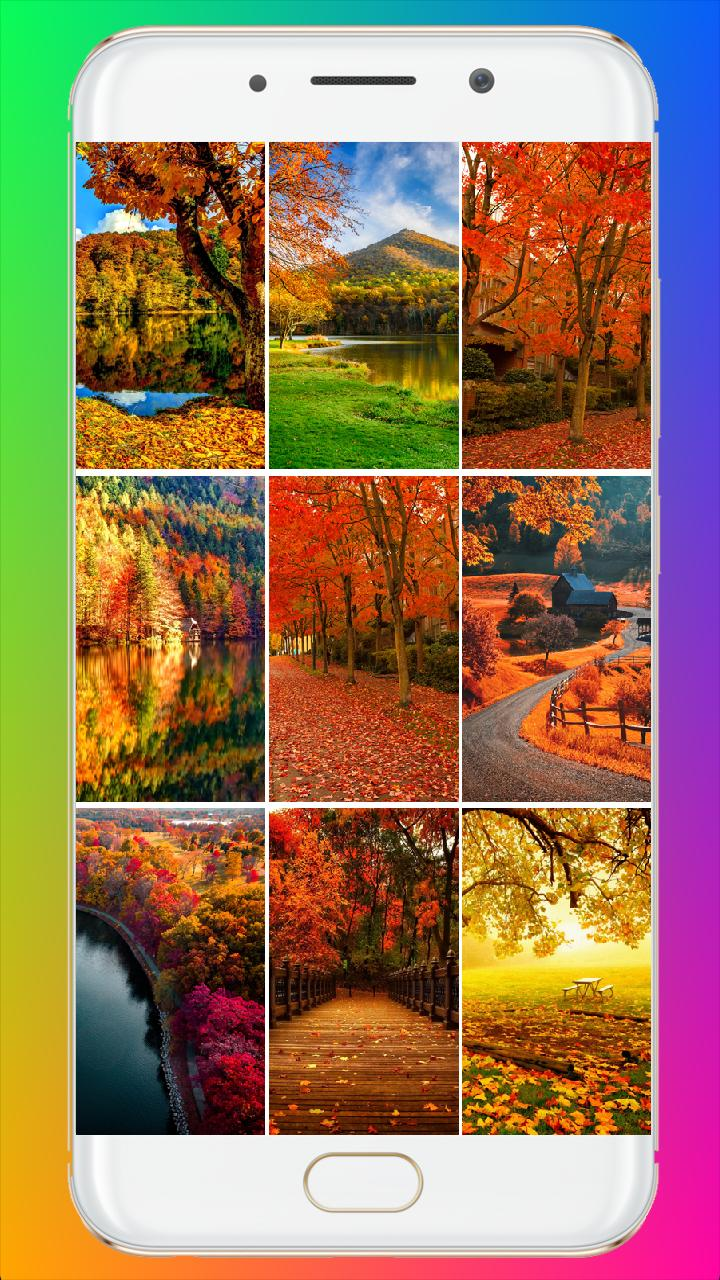 Fall Wallpaper For Android Apk Download