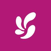 fondi icono