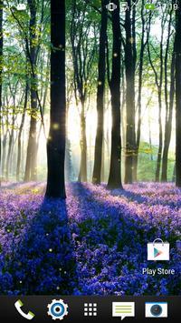 الغابات خلفية حية تصوير الشاشة 4