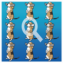 Find the difference - Find it APK