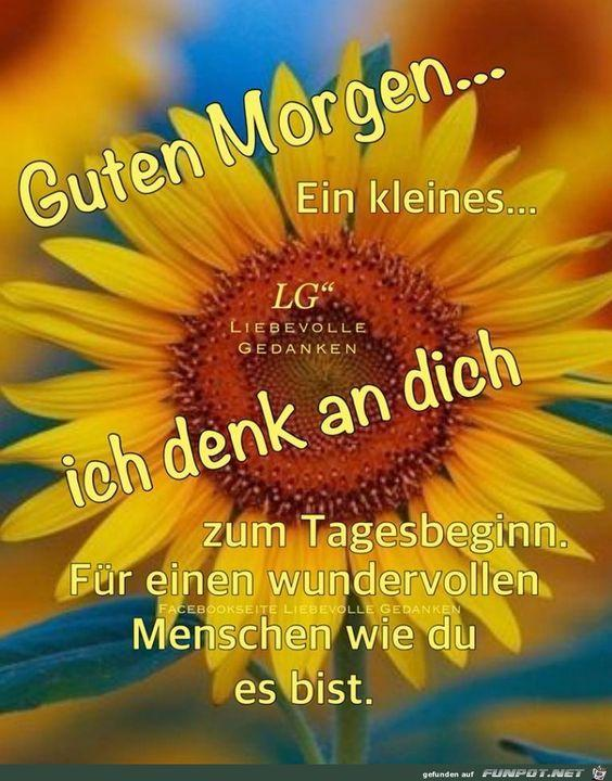 Guten Morgen 2020 For Android Apk Download