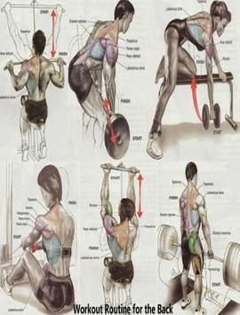 Gym Workout Exercises poster