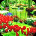 Garden Wallpaper HD