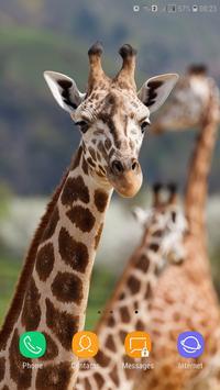 Giraffe Wallpaper screenshot 4