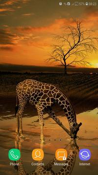 Giraffe Wallpaper screenshot 8