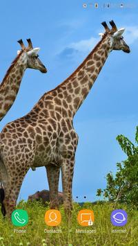 Giraffe Wallpaper screenshot 9