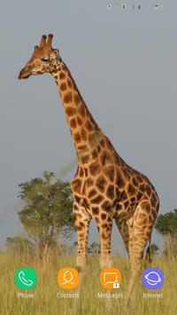 Giraffe Wallpaper screenshot 15