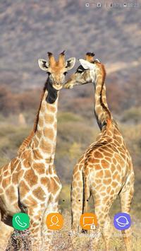 Giraffe Wallpaper screenshot 2