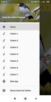 Canto De Coleiro Pássaro screenshot 1