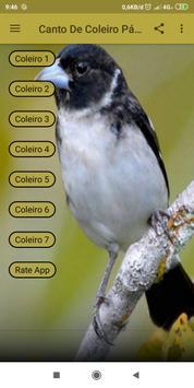 Canto De Coleiro Pássaro screenshot 2