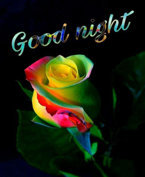Romantic Good Night Love Images Gif for Android - APK Download