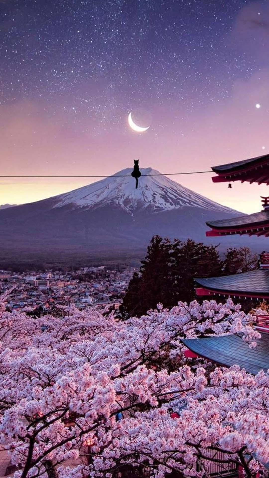 Japanese Wallpapers Japan Wallpaper For Android Apk Download