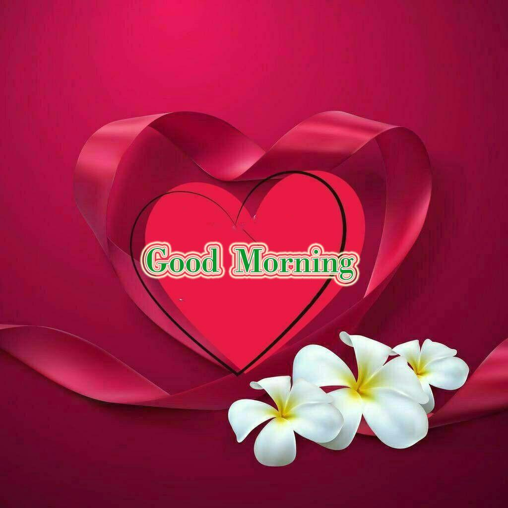 Good Morning Gif Love Images Hd For Android Apk Download