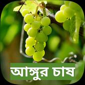 Farming Grape fruit in Bengali icon