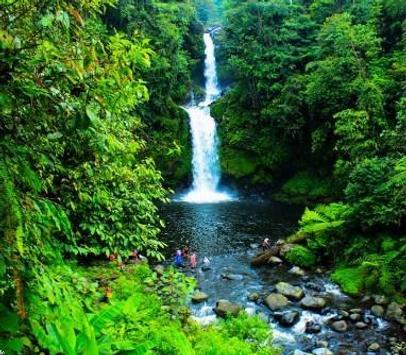 Green 80 Nature Wallpaper screenshot 5