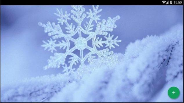 Snow Wallpaper screenshot 4