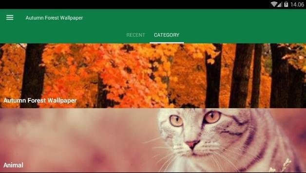 Autumn Forest Wallpaper screenshot 2
