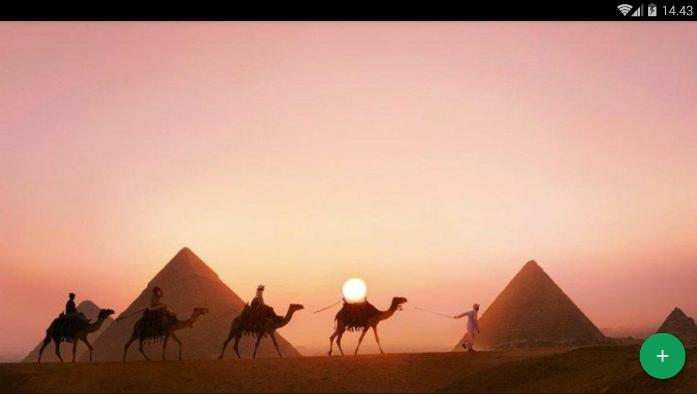 Camel Desert Wallpaper For Android Apk Download