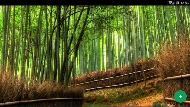 Bamboo Forest Wallpaper screenshot 4