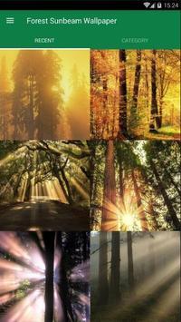 Sunbeam Forest Wallpaper poster
