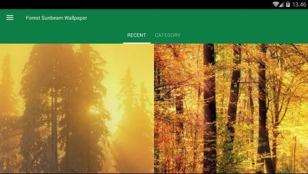 Sunbeam Forest Wallpaper screenshot 3