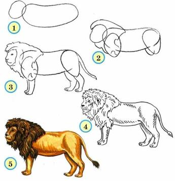 How To Draw Animals screenshot 7