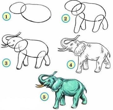 How To Draw Animals screenshot 17