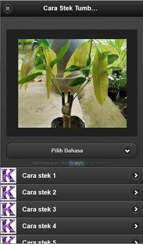 How to cuttings plants poster