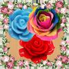 Rose Garden 아이콘