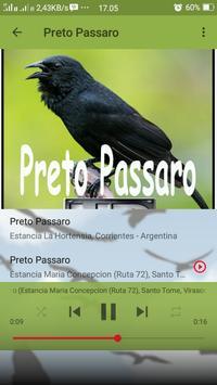 Canto de Preto Passaro screenshot 4