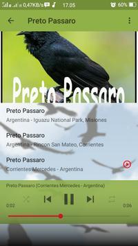 Canto de Preto Passaro screenshot 3