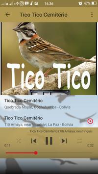 Canto de Tico Tico Cemitério screenshot 6