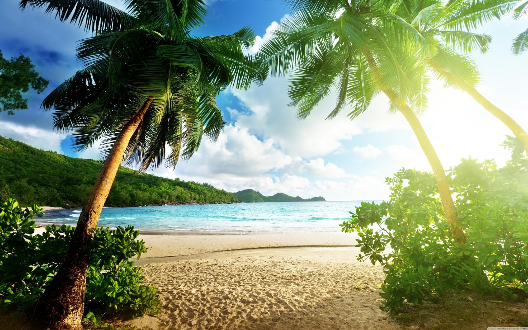 Island Wallpaper For Android Apk Download