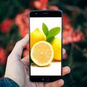 Fresh Lemon Fruits Wallpaper icon