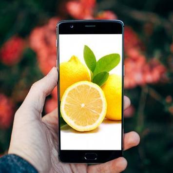 Fresh Lemon Fruits Wallpaper poster