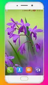 Purple Flower Wallpaper screenshot 14
