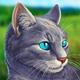 Cat Simulator - Animal Life APK image thumbnail