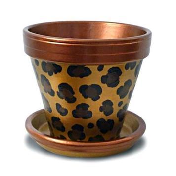 Painted Flower Pot Designs screenshot 3