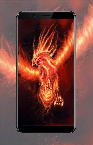Wallpaper Phoenix Api for Android - APK Download