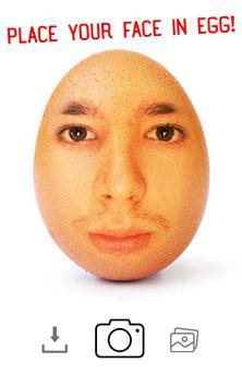 Face on Egg ( World Record Egg ) poster