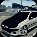 206 Drift & Driving Simulator