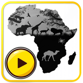 African Music Free The Best Live Radio free icon