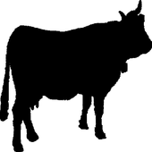 Cattle Auction icon