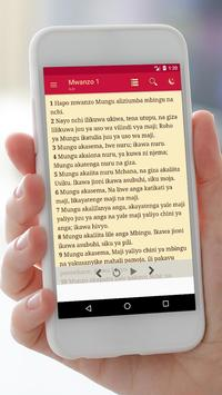 Swahili Audio Bible Offline screenshot 2